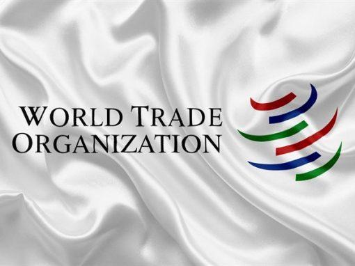 Volumen del comercio mundial de mercancías se mantuvo firme en el cuarto trimestre del 2020: OMC