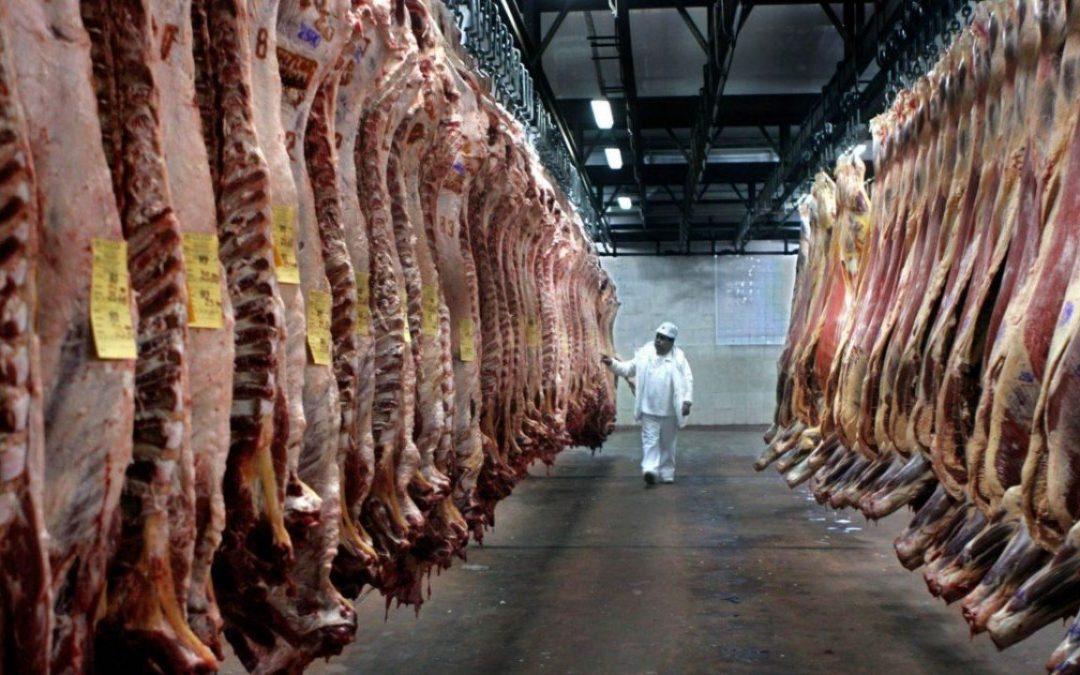Argentina suspende temporalmente las exportaciones de carne para frenar la inflación